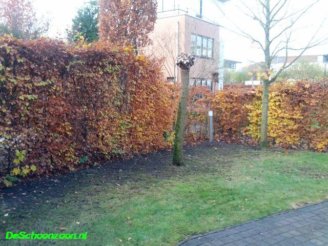 Winterklaar Maken Tuin : De tuin winterklaar maken permacultuurnetwerk